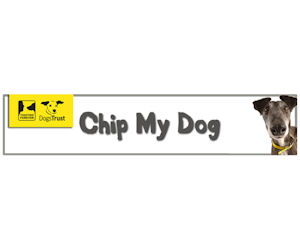 Chip My Dog